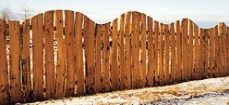 Szélezetlen rusztikus fenyő gyalult deszka
